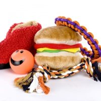 4 Shopping Tips for Buying a Good Dog Toy